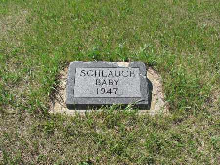 SCHLAUCH 029, LARRY-STILLBORN - LaMoure County, North Dakota | LARRY-STILLBORN SCHLAUCH 029 - North Dakota Gravestone Photos