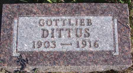 DITTUS, GOTTLIEB - Logan County, North Dakota | GOTTLIEB DITTUS - North Dakota Gravestone Photos