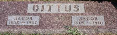 DITTUS, JACOB - Logan County, North Dakota | JACOB DITTUS - North Dakota Gravestone Photos