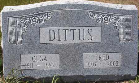 DITTUS, OLGA - Logan County, North Dakota | OLGA DITTUS - North Dakota Gravestone Photos