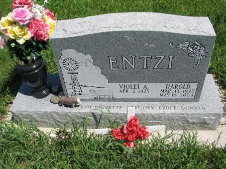 ENTZI 072, HAROLD - Logan County, North Dakota   HAROLD ENTZI 072 - North Dakota Gravestone Photos