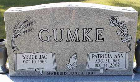 GUMKE, PATRICIA ANN - Logan County, North Dakota   PATRICIA ANN GUMKE - North Dakota Gravestone Photos