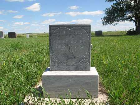 SAARI, AILI SYLVIA - Logan County, North Dakota   AILI SYLVIA SAARI - North Dakota Gravestone Photos