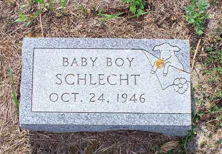 SCHLECHT, BABY BOY - Logan County, North Dakota | BABY BOY SCHLECHT - North Dakota Gravestone Photos
