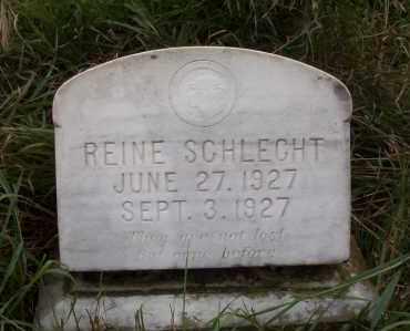 SCHLECHT, REINIE - Logan County, North Dakota | REINIE SCHLECHT - North Dakota Gravestone Photos