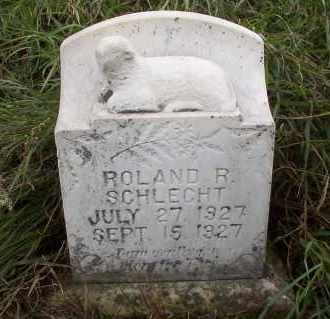 SCHLECHT, ROLAND R. - Logan County, North Dakota | ROLAND R. SCHLECHT - North Dakota Gravestone Photos