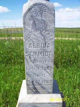 SCHMIDT, ALBINA - Logan County, North Dakota | ALBINA SCHMIDT - North Dakota Gravestone Photos