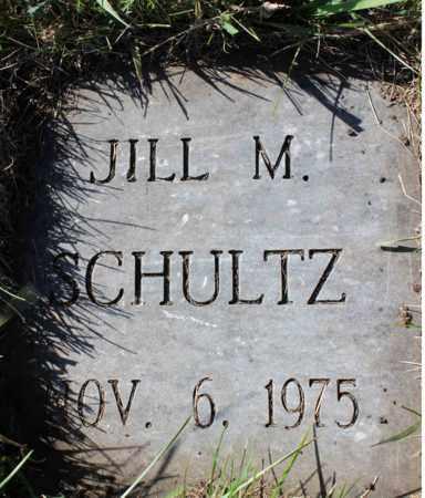 SCHULTZ, JILL M. - Logan County, North Dakota | JILL M. SCHULTZ - North Dakota Gravestone Photos