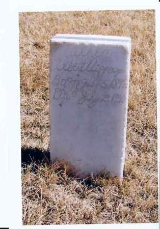 AIPPERSPACH, ALBERT - McIntosh County, North Dakota | ALBERT AIPPERSPACH - North Dakota Gravestone Photos
