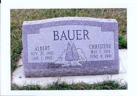 BAUER, CHRISTINE - McIntosh County, North Dakota | CHRISTINE BAUER - North Dakota Gravestone Photos