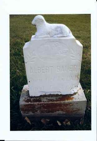 BAUER, ALBERT - McIntosh County, North Dakota | ALBERT BAUER - North Dakota Gravestone Photos