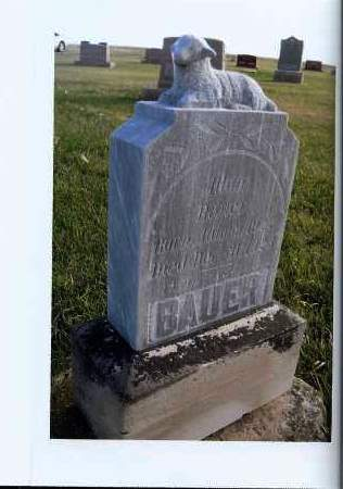 BAUER, ALTON - McIntosh County, North Dakota   ALTON BAUER - North Dakota Gravestone Photos