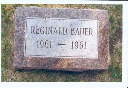 BAUER, REGINALD - McIntosh County, North Dakota | REGINALD BAUER - North Dakota Gravestone Photos