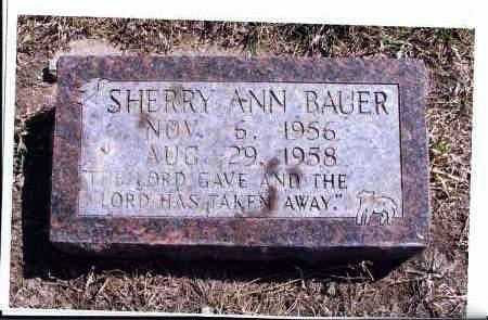 BAUER, SHERRY ANN - McIntosh County, North Dakota | SHERRY ANN BAUER - North Dakota Gravestone Photos