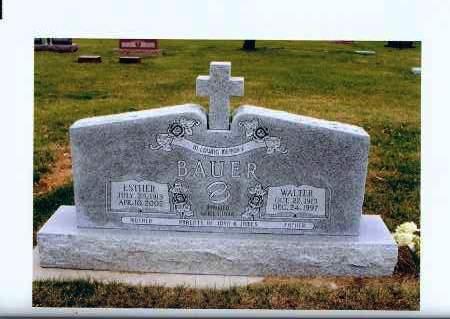 BAUER, WALTER - McIntosh County, North Dakota | WALTER BAUER - North Dakota Gravestone Photos