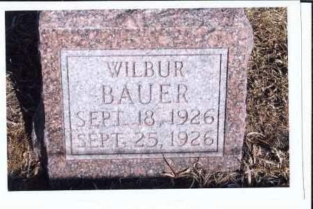 BAUER, WILBUR - McIntosh County, North Dakota | WILBUR BAUER - North Dakota Gravestone Photos