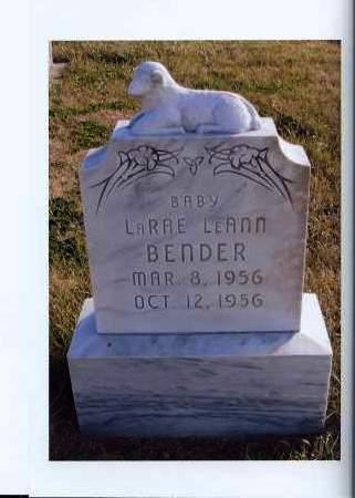 BENDER, LARAE LEANN - McIntosh County, North Dakota | LARAE LEANN BENDER - North Dakota Gravestone Photos