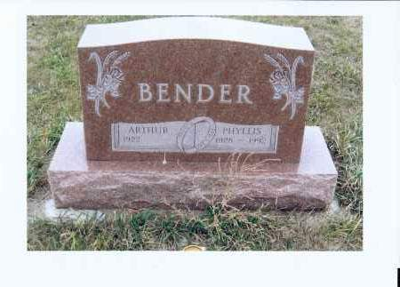 BENDER, PHYLLIS - McIntosh County, North Dakota | PHYLLIS BENDER - North Dakota Gravestone Photos