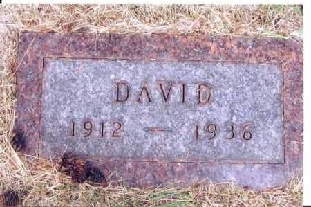 BENDEWALD, DAVID - McIntosh County, North Dakota | DAVID BENDEWALD - North Dakota Gravestone Photos