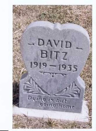 BITZ, DAVID - McIntosh County, North Dakota   DAVID BITZ - North Dakota Gravestone Photos