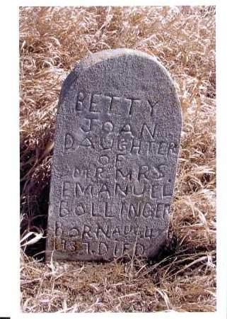 BOLLINGER, BETTY JANE - McIntosh County, North Dakota | BETTY JANE BOLLINGER - North Dakota Gravestone Photos