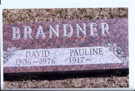 BRANDNER, DAVID - McIntosh County, North Dakota | DAVID BRANDNER - North Dakota Gravestone Photos