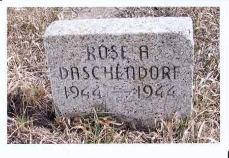 DASCHENDORF, ROSE A. - McIntosh County, North Dakota | ROSE A. DASCHENDORF - North Dakota Gravestone Photos