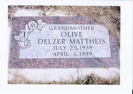 DELZER, OLIVE - McIntosh County, North Dakota | OLIVE DELZER - North Dakota Gravestone Photos