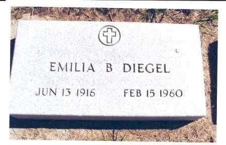 MAIER DIEGEL, EMILIA B. - McIntosh County, North Dakota | EMILIA B. MAIER DIEGEL - North Dakota Gravestone Photos
