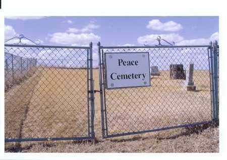 ENTRANCE GATE AND SIGN, PEACE LUTHERAN CEMETERY - McIntosh County, North Dakota | PEACE LUTHERAN CEMETERY ENTRANCE GATE AND SIGN - North Dakota Gravestone Photos