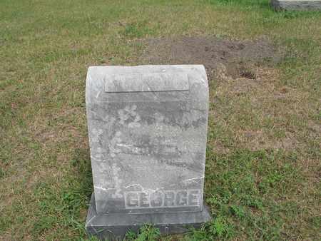 GEORGE 004, ROSINA - McIntosh County, North Dakota | ROSINA GEORGE 004 - North Dakota Gravestone Photos