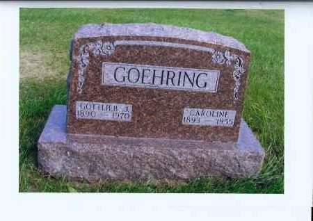 GOEHRING, GOTTLIEB J. - McIntosh County, North Dakota | GOTTLIEB J. GOEHRING - North Dakota Gravestone Photos