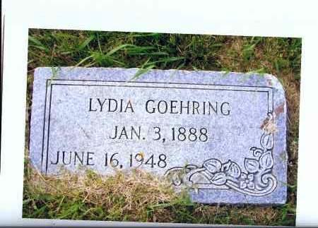 GOEHRING, LYDIA - McIntosh County, North Dakota | LYDIA GOEHRING - North Dakota Gravestone Photos