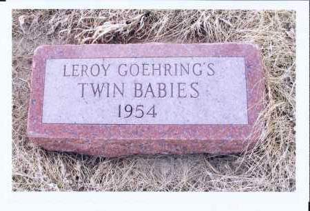 GOEHRING, TWIN BABIES - McIntosh County, North Dakota | TWIN BABIES GOEHRING - North Dakota Gravestone Photos