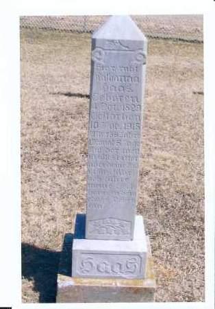 HAAS, KATHARINA - McIntosh County, North Dakota   KATHARINA HAAS - North Dakota Gravestone Photos