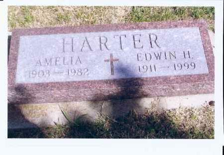 HARTER, AMELIA - McIntosh County, North Dakota | AMELIA HARTER - North Dakota Gravestone Photos