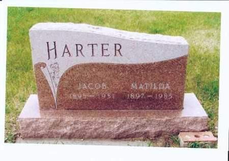 HARTER, MATILDA - McIntosh County, North Dakota | MATILDA HARTER - North Dakota Gravestone Photos