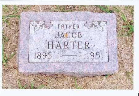 HARTER, JACOB - McIntosh County, North Dakota | JACOB HARTER - North Dakota Gravestone Photos