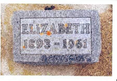 SCHOCK HEINRICH, ELIZABETH - McIntosh County, North Dakota | ELIZABETH SCHOCK HEINRICH - North Dakota Gravestone Photos
