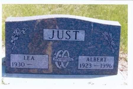 JUST, ALBERT - McIntosh County, North Dakota | ALBERT JUST - North Dakota Gravestone Photos