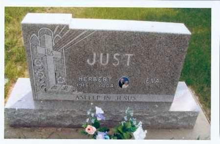 JUST, HERBERT - McIntosh County, North Dakota | HERBERT JUST - North Dakota Gravestone Photos