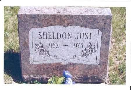 JUST, SHELDON - McIntosh County, North Dakota   SHELDON JUST - North Dakota Gravestone Photos
