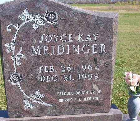 MEIDINGER, JOYCE KAY - McIntosh County, North Dakota | JOYCE KAY MEIDINGER - North Dakota Gravestone Photos