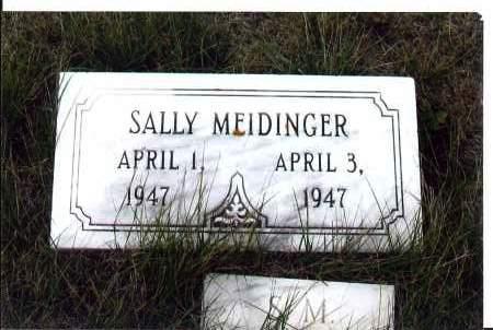 MEIDINGER, SALLY - McIntosh County, North Dakota   SALLY MEIDINGER - North Dakota Gravestone Photos