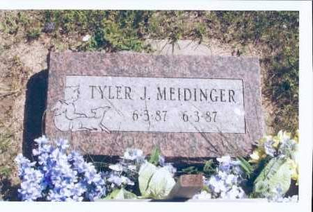 MEIDINGER, TYLER J. - McIntosh County, North Dakota | TYLER J. MEIDINGER - North Dakota Gravestone Photos