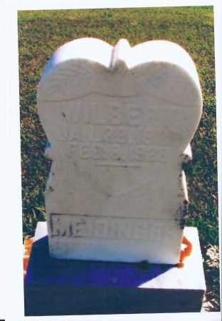 MEIDINGER, WILBERT - McIntosh County, North Dakota | WILBERT MEIDINGER - North Dakota Gravestone Photos