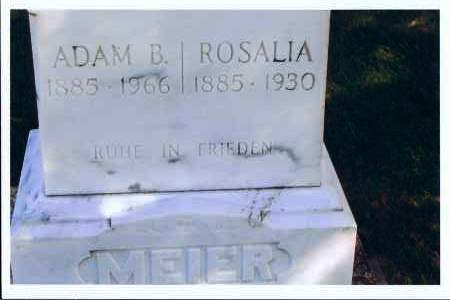 LACHER MEIER, ROSALIA - McIntosh County, North Dakota   ROSALIA LACHER MEIER - North Dakota Gravestone Photos