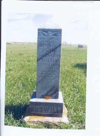 PUDWILL, GOTTLIEB - McIntosh County, North Dakota | GOTTLIEB PUDWILL - North Dakota Gravestone Photos
