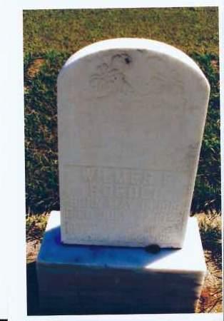 ROEDEL, WILMER E. - McIntosh County, North Dakota   WILMER E. ROEDEL - North Dakota Gravestone Photos