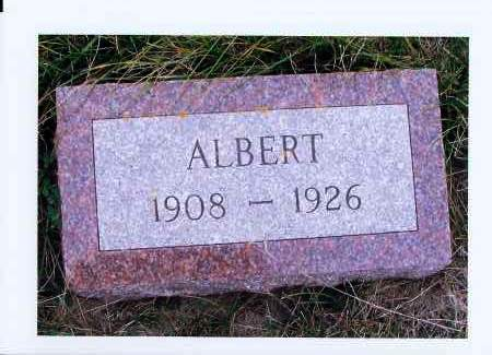 SAYLER, ALBERT - McIntosh County, North Dakota   ALBERT SAYLER - North Dakota Gravestone Photos